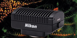 NEW: Nikon DS-Fi3 and DS-L4 microscope camera & control unit